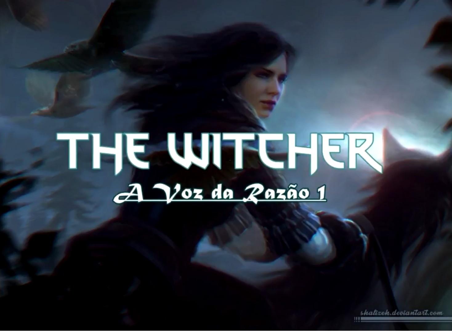 witcher audiobook www